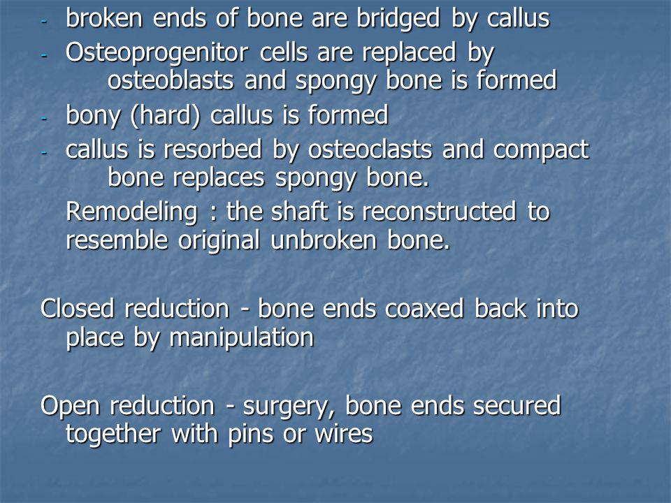- broken ends of bone are bridged by callus - Osteoprogenitor cells are replaced by osteoblasts and spongy bone is formed - bony (hard) callus is formed - callus is resorbed by osteoclasts and compact bone replaces spongy bone.