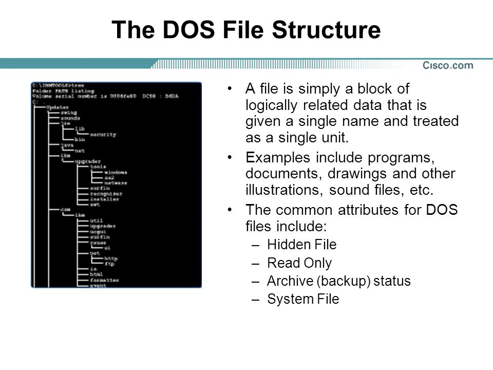The DOS File Structure A file is simply a block of logically related data that is given a single name and treated as a single unit.