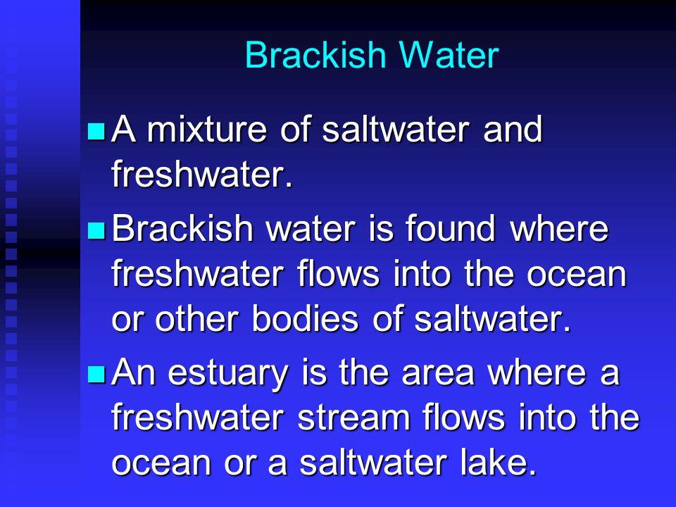 Brackish Water A mixture of saltwater and freshwater.