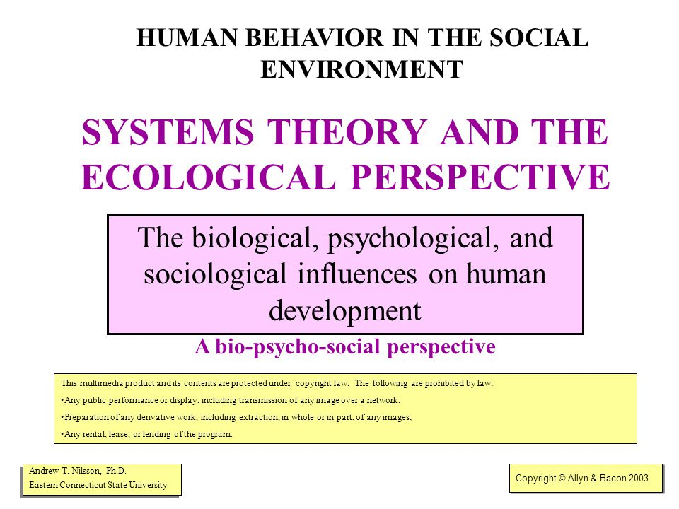 Copyright © Allyn & Bacon 2003 Systems/ecological perspective Person-in-environment Social work views the individual in the context of his/her surrounding social systems.