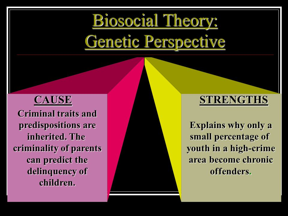 Biosocial Theory: Genetic Perspective Criminal traits and predispositions are inherited.