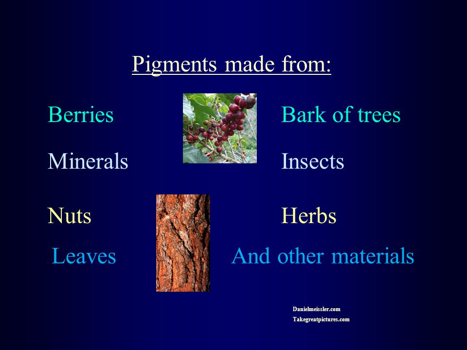 Pigments made from: Berries Bark of trees MineralsInsects NutsHerbs Leaves And other materials Danielmeissler.com Takegreatpictures.com
