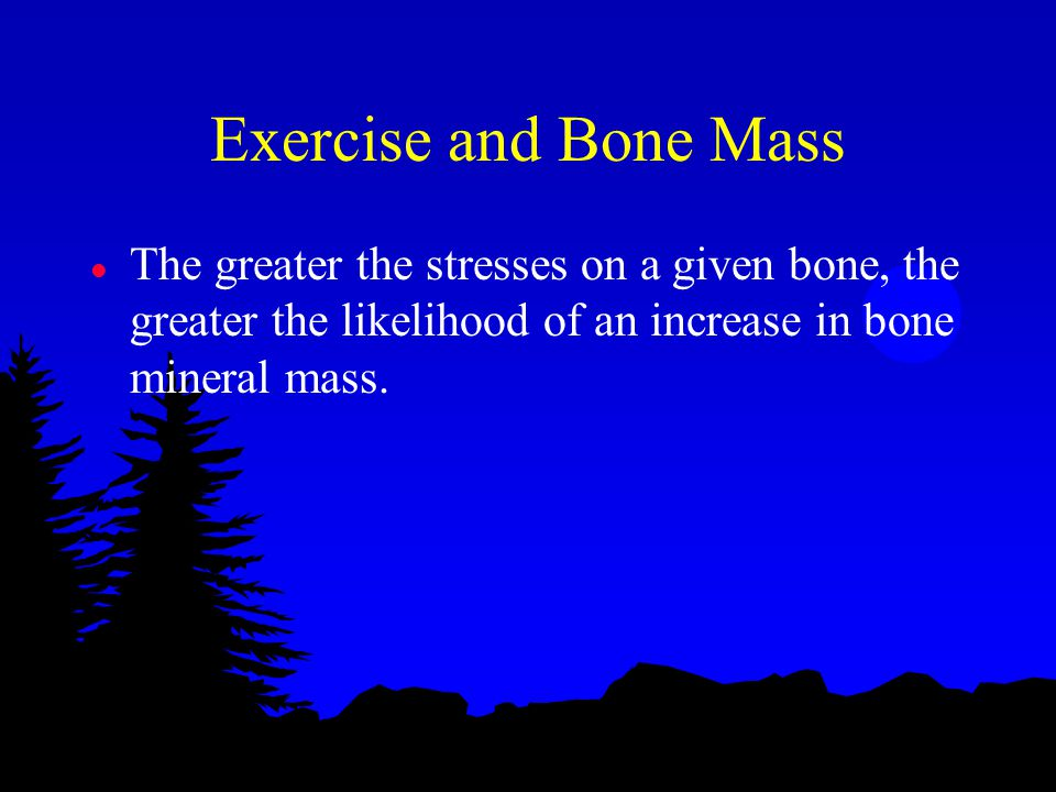 Exercise and Bone Mass l The greater the stresses on a given bone, the greater the likelihood of an increase in bone mineral mass.