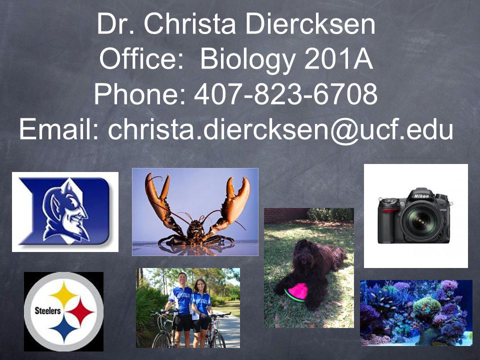 Dr.Diercksen's Office Hours: Biology Bldg.