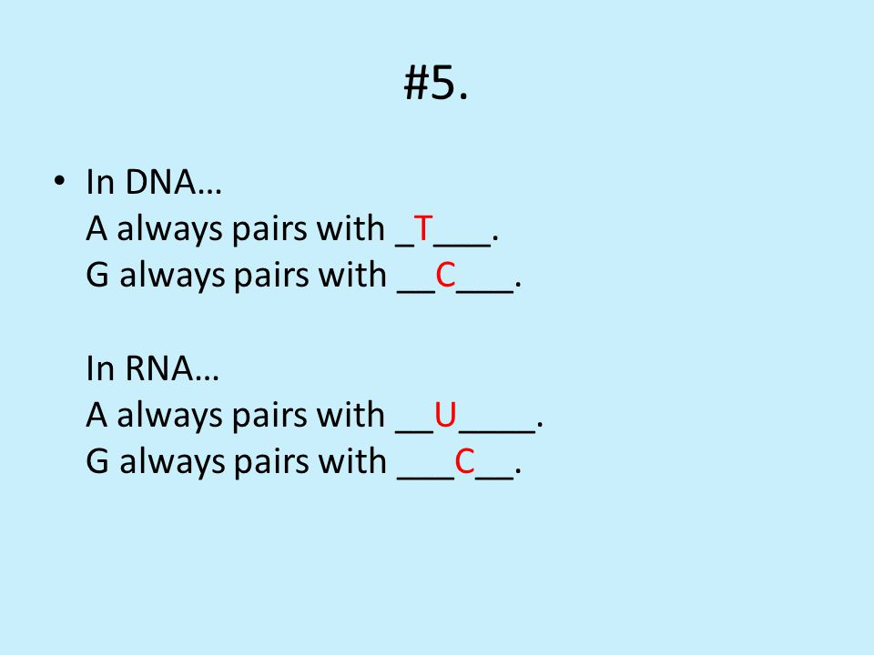 #5. In DNA… A always pairs with _T___. G always pairs with __C___.