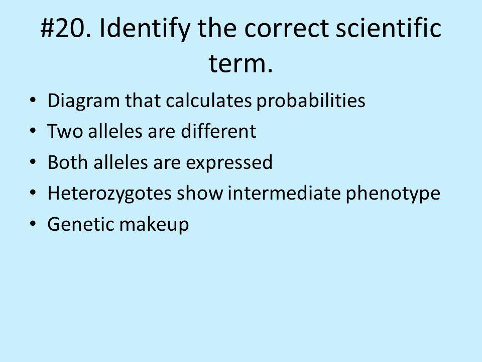 #20. Identify the correct scientific term.