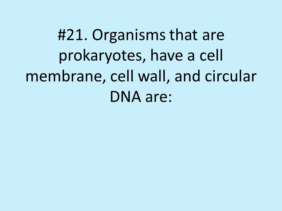 #21. Organisms that are prokaryotes, have a cell membrane, cell wall, and circular DNA are: