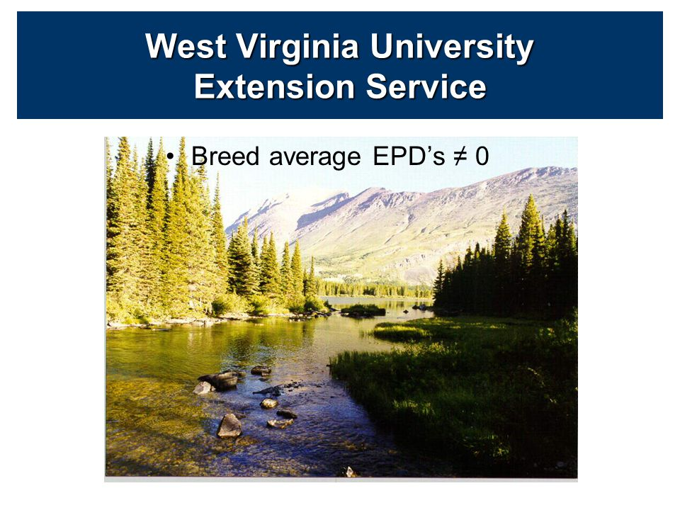 Breed average EPD's ≠ 0 West Virginia University Extension Service