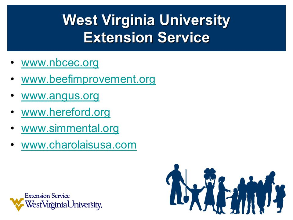 www.nbcec.org www.beefimprovement.org www.angus.org www.hereford.org www.simmental.org www.charolaisusa.com West Virginia University Extension Service