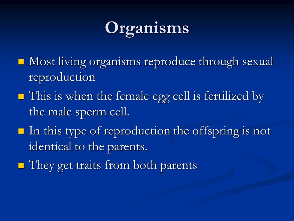 Organisms Most living organisms reproduce through sexual reproduction Most living organisms reproduce through sexual reproduction This is when the female egg cell is fertilized by the male sperm cell.