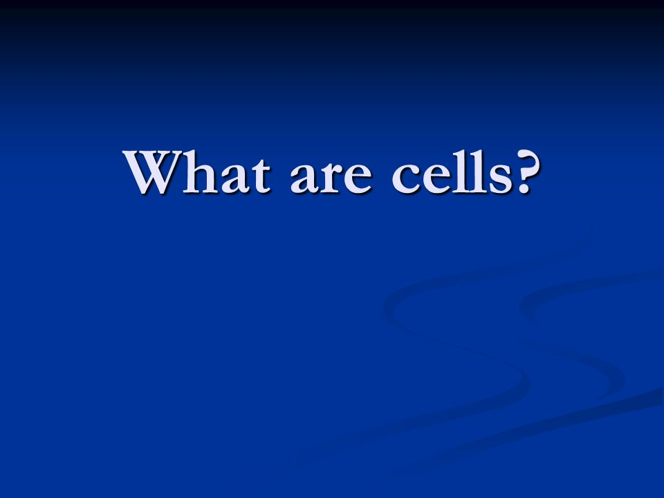 What are cells