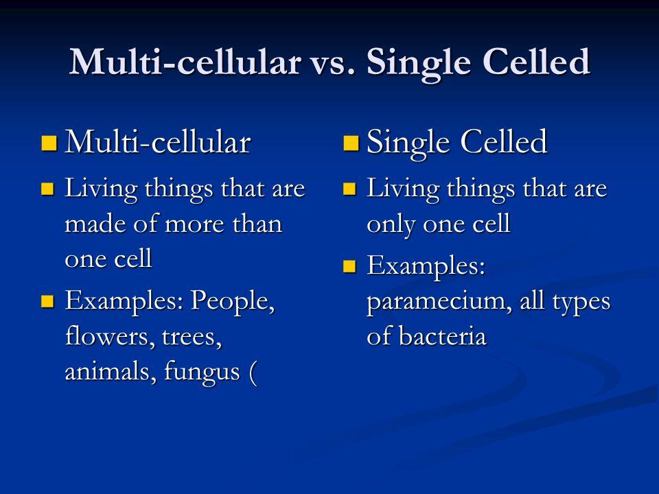 Multi-cellular vs.