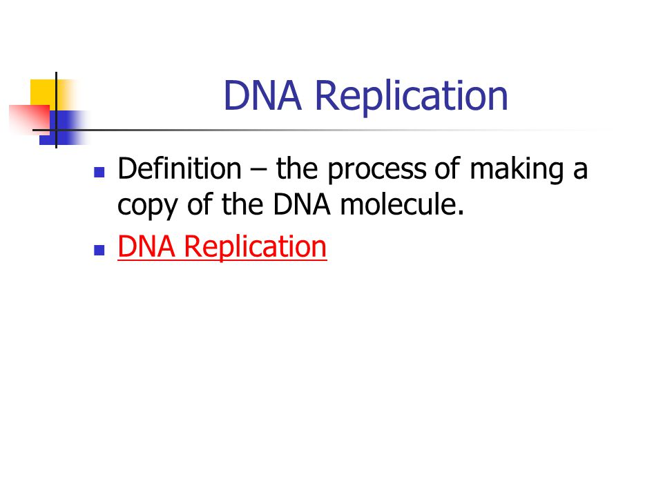 DNA Replication Definition – the process of making a copy of the DNA molecule. DNA Replication