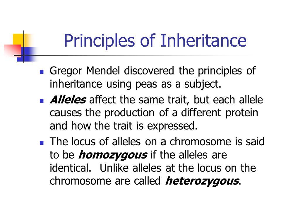Principles of Inheritance Gregor Mendel discovered the principles of inheritance using peas as a subject. Alleles affect the same trait, but each alle