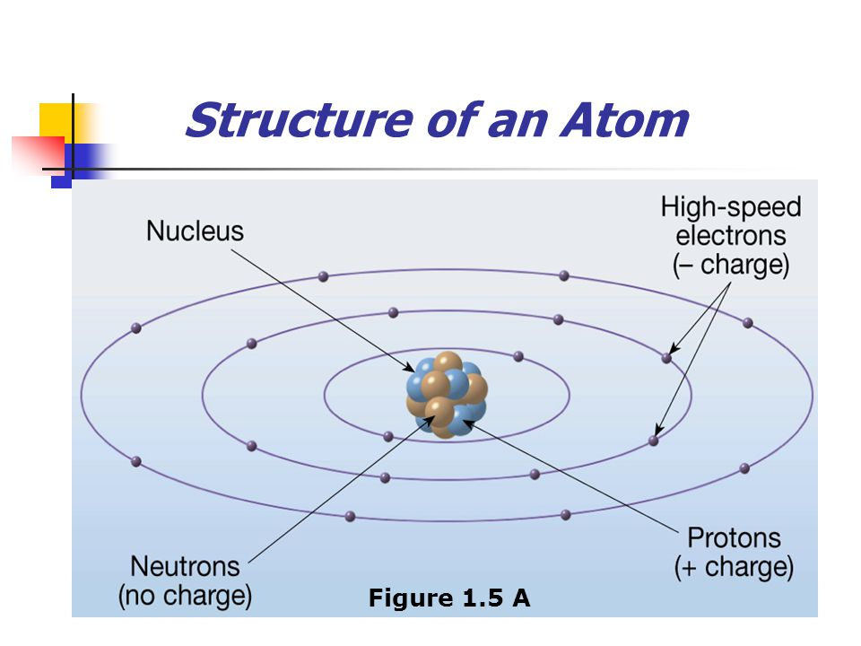 Structure of an Atom Figure 1.5 A