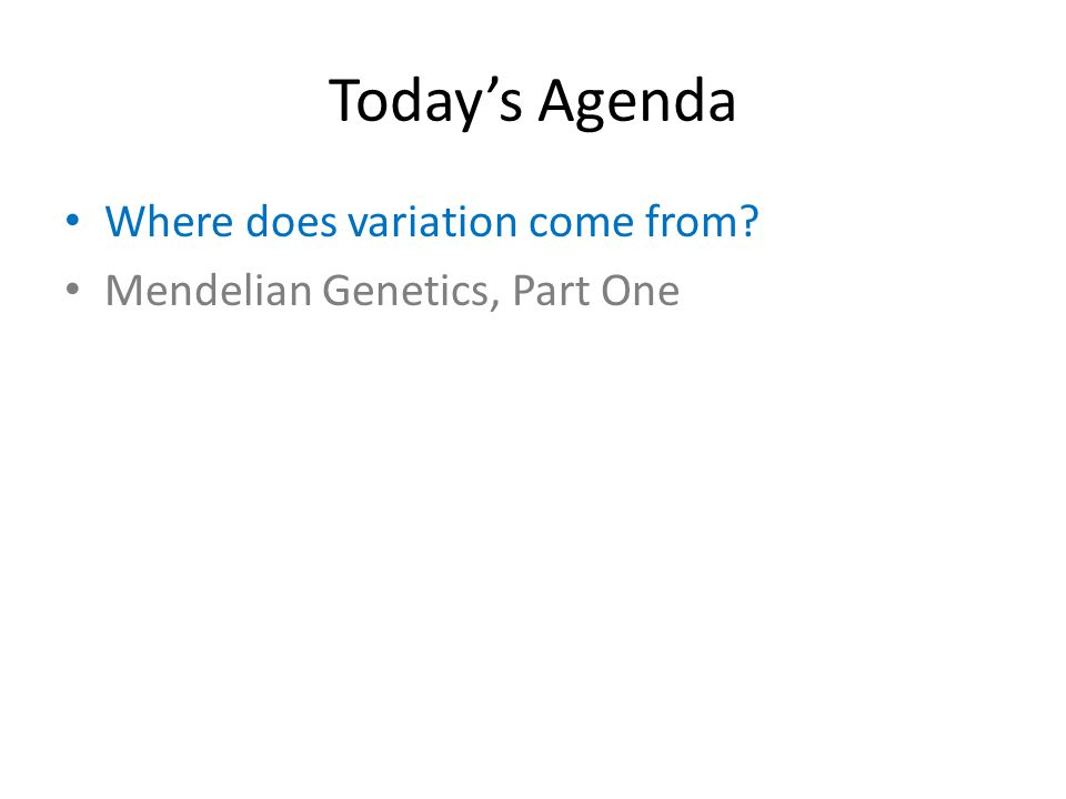 Today's Agenda Where does variation come from Mendelian Genetics, Part One