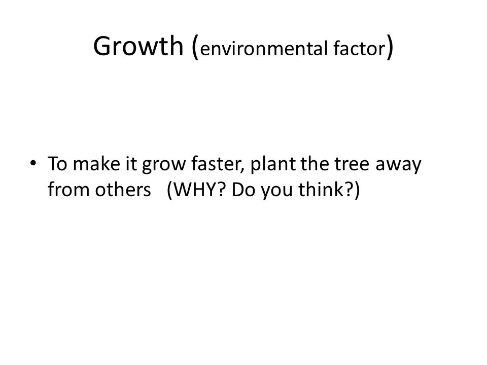 Growth ( environmental factor ) To make it grow faster, plant the tree away from others (WHY.