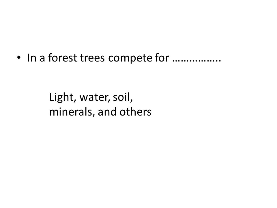 In a forest trees compete for …………….. Light, water, soil, minerals, and others