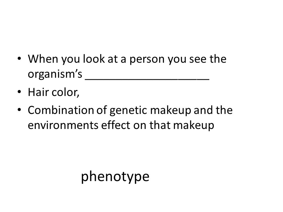 When you look at a person you see the organism's ____________________ Hair color, Combination of genetic makeup and the environments effect on that makeup phenotype