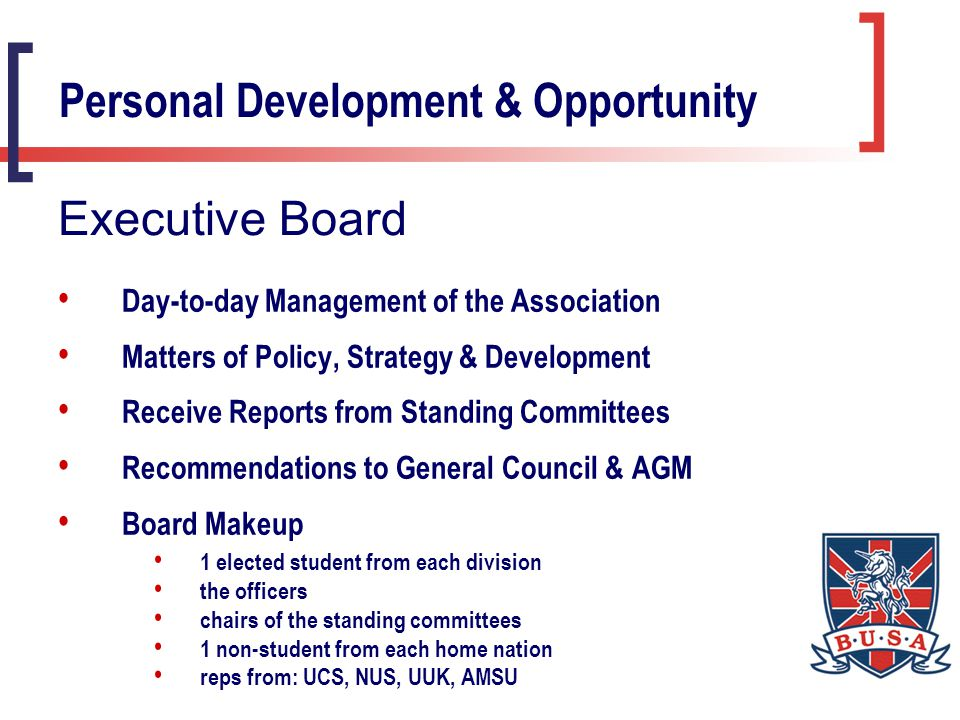 Deals with Appeals & Discipline Meetings 'as and when' Reports to Executive Board Makeup of Panel chair – BUSA Life Vice President 2 students from 'neutral' divisions (not Exec.