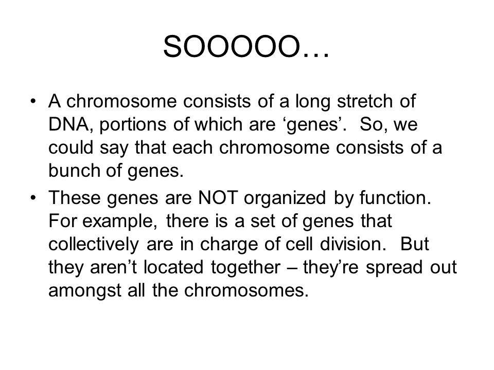 SOOOOO… A chromosome consists of a long stretch of DNA, portions of which are 'genes'. So, we could say that each chromosome consists of a bunch of ge