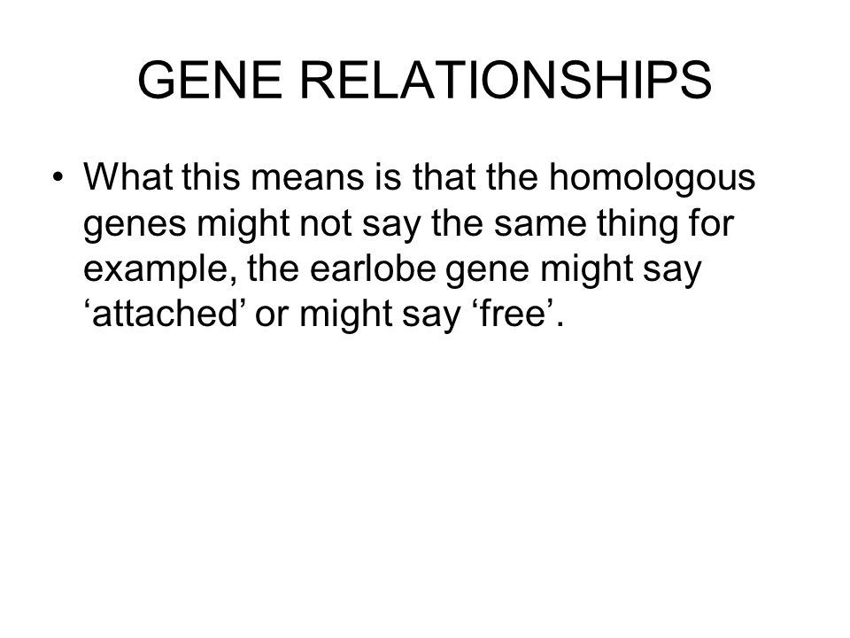 GENE RELATIONSHIPS What this means is that the homologous genes might not say the same thing for example, the earlobe gene might say 'attached' or mig