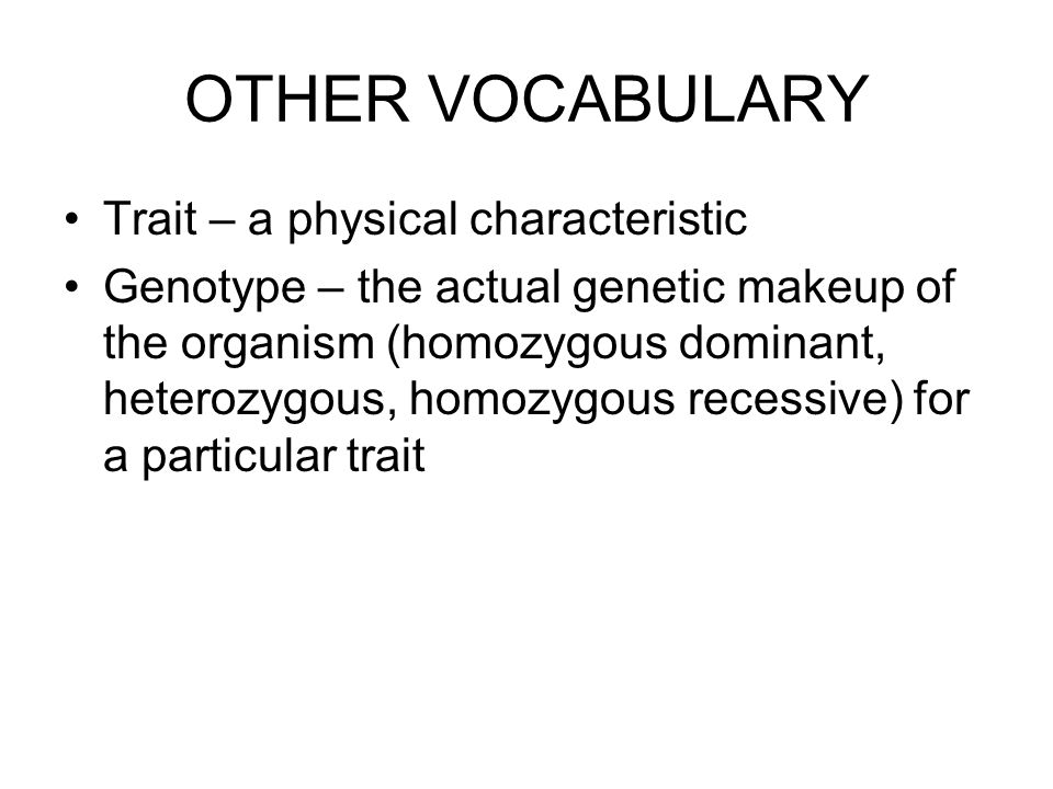 OTHER VOCABULARY Trait – a physical characteristic Genotype – the actual genetic makeup of the organism (homozygous dominant, heterozygous, homozygous