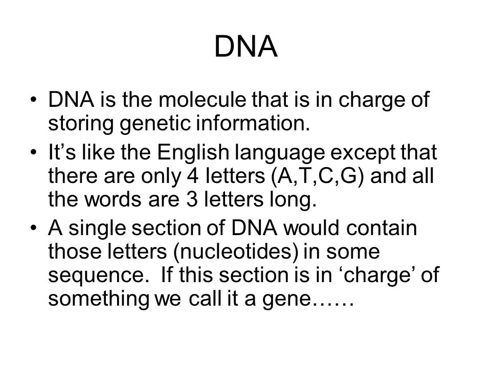 DNA DNA is the molecule that is in charge of storing genetic information.