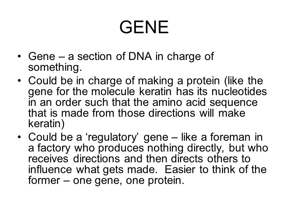 GENE RELATIONSHIPS But if they're different they'll need to find way to resolve that difference.