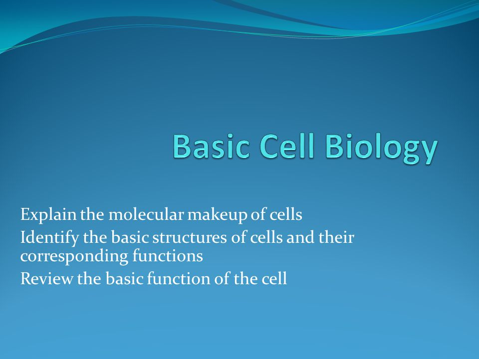 ECF Cells must be able to obtain products from the ECF.