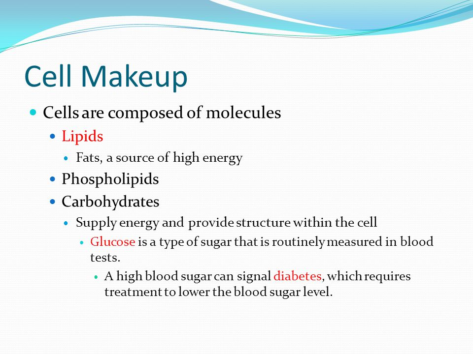 Cell Makeup Cells are composed of molecules Lipids Fats, a source of high energy Phospholipids Carbohydrates Supply energy and provide structure within the cell Glucose is a type of sugar that is routinely measured in blood tests.