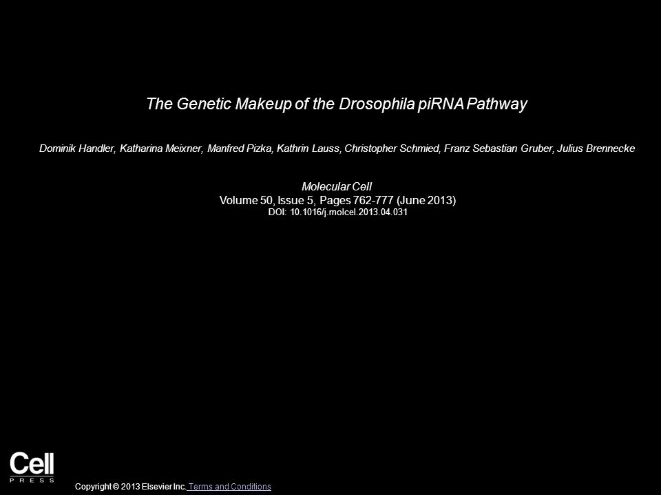 The Genetic Makeup of the Drosophila piRNA Pathway Dominik Handler, Katharina Meixner, Manfred Pizka, Kathrin Lauss, Christopher Schmied, Franz Sebastian Gruber, Julius Brennecke Molecular Cell Volume 50, Issue 5, Pages 762-777 (June 2013) DOI: 10.1016/j.molcel.2013.04.031 Copyright © 2013 Elsevier Inc.