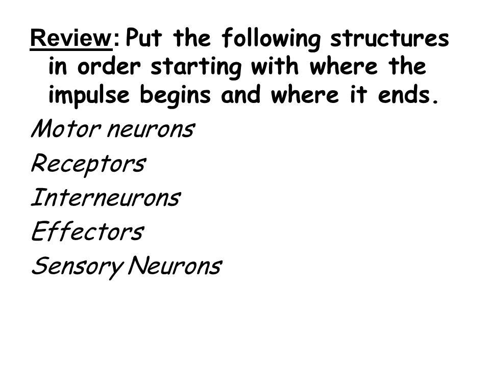 DID YOU KNOW.There are approximately 100 billion neurons in the human brain.