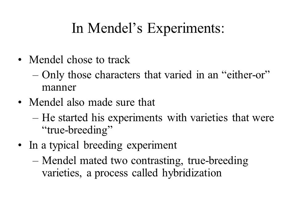 """In Mendel's Experiments: Mendel chose to track –Only those characters that varied in an """"either-or"""" manner Mendel also made sure that –He started his"""