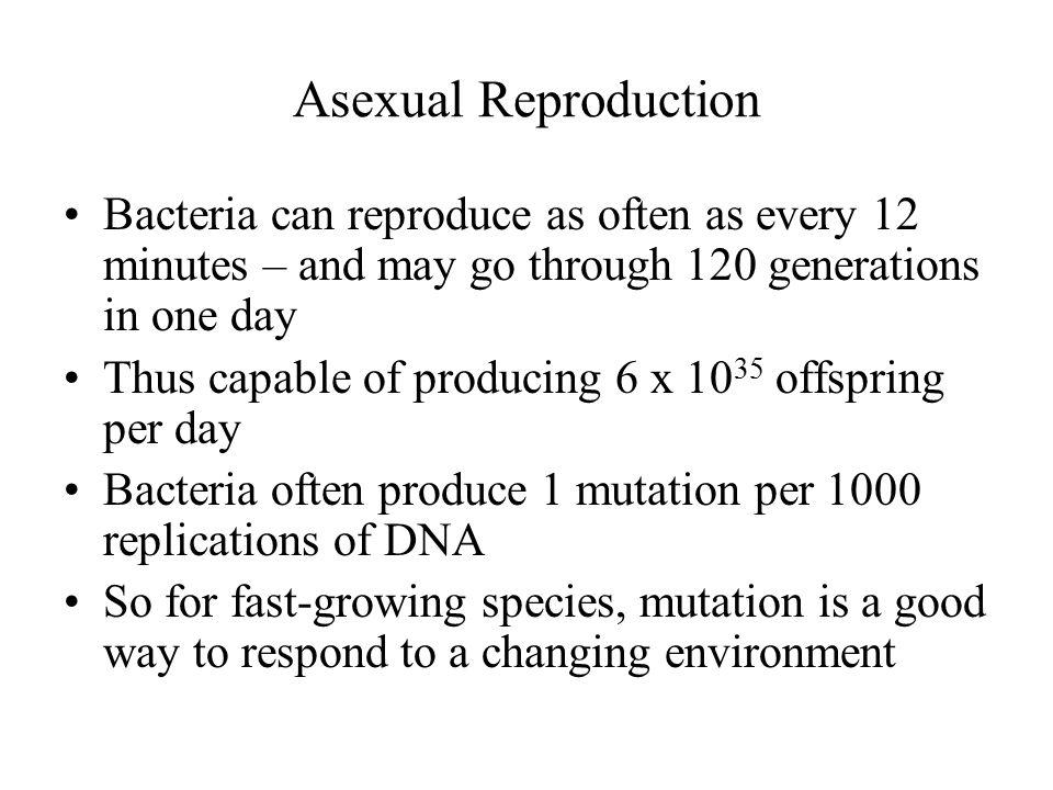 Parental generation (P) Stamens Carpel First filial generation offspring (F 1 ) TECHNIQUE RESULTS 32145