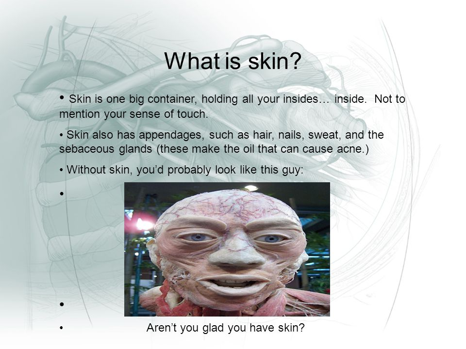 What is skin. Skin is one big container, holding all your insides… inside.