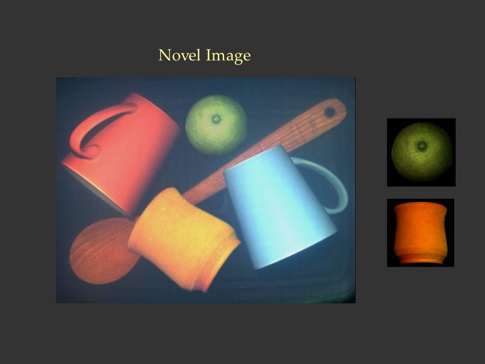 Novel Image