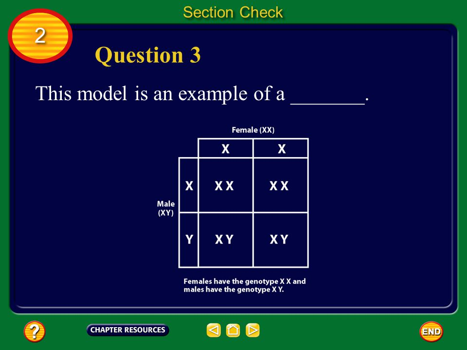 2 2 Section Check Answer The answer is C.