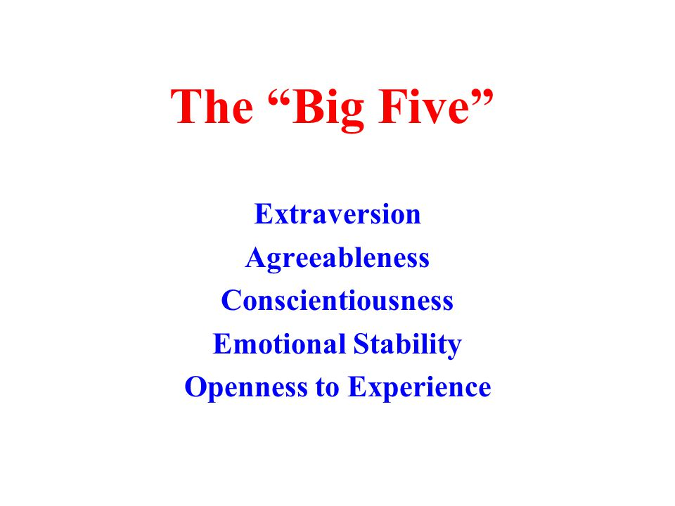 The Big Five Extraversion Agreeableness Conscientiousness Emotional Stability Openness to Experience