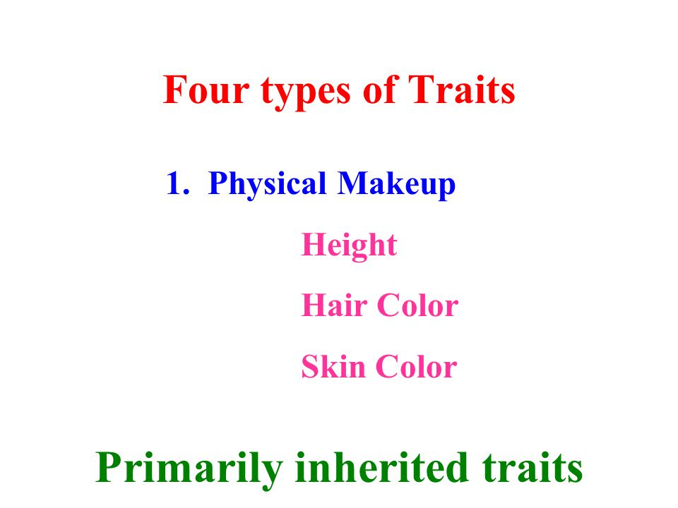 Four types of Traits 1. Physical Makeup Height Hair Color Skin Color Primarily inherited traits