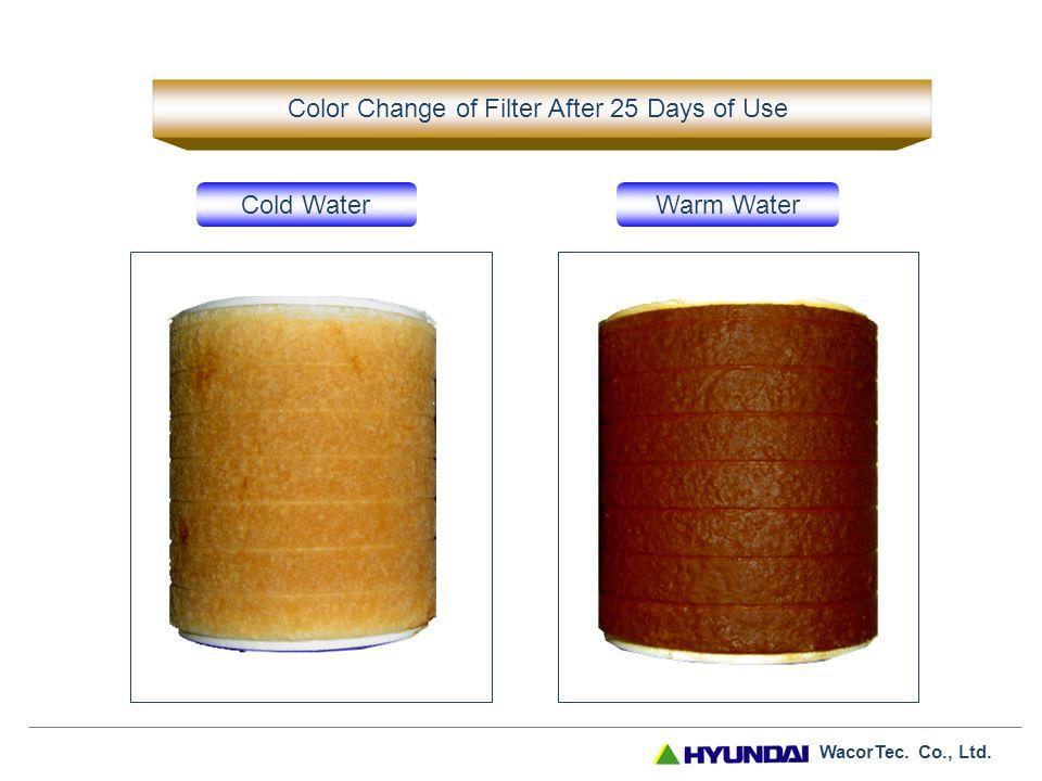 WacorTec. Co., Ltd. Color Change of Filter Before After (45 days) - Seoul The color change of filter may vary from region to region. (Coastal regions