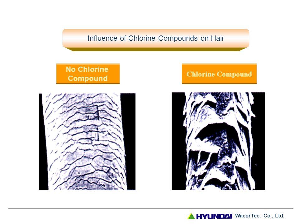 WacorTec. Co., Ltd. Comparison to Competitor's Product Our Product Competitor's Product Filter replacement also achieves regeneration. (Filter replace