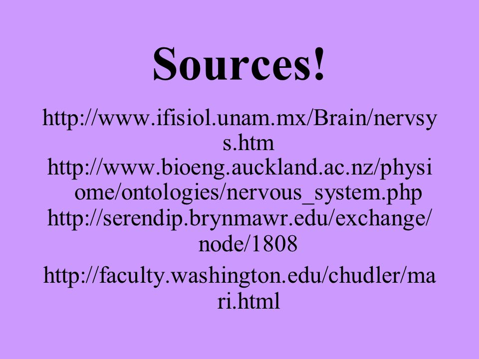 Sources! http://www.ifisiol.unam.mx/Brain/nervsy s.htm http://www.bioeng.auckland.ac.nz/physi ome/ontologies/nervous_system.php http://serendip.brynma