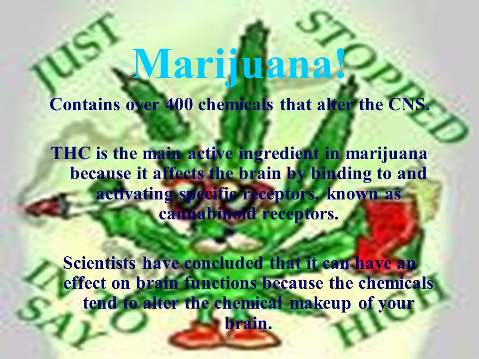Marijuana. Contains over 400 chemicals that alter the CNS.