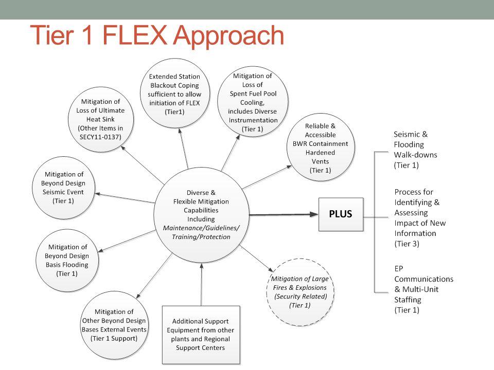 Tier 1 FLEX Approach 19