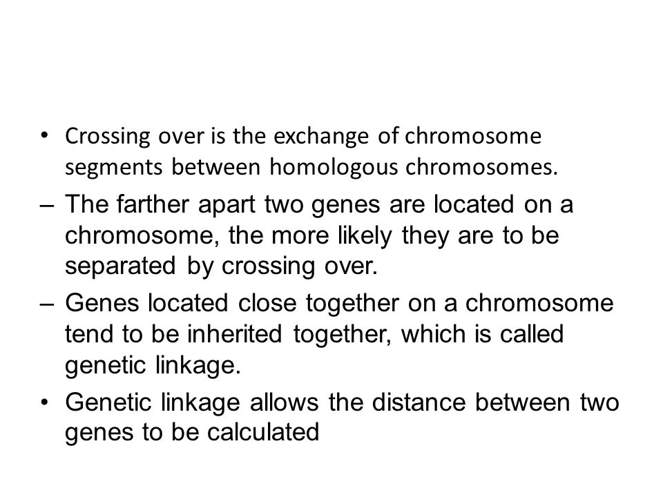 Crossing over is the exchange of chromosome segments between homologous chromosomes.