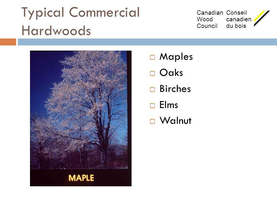 Typical Commercial Hardwoods  Maples  Oaks  Birches  Elms  Walnut Canadian Conseil Wood canadien Council du bois