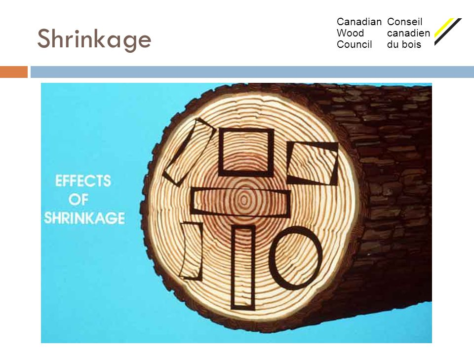 Shrinkage Canadian Conseil Wood canadien Council du bois