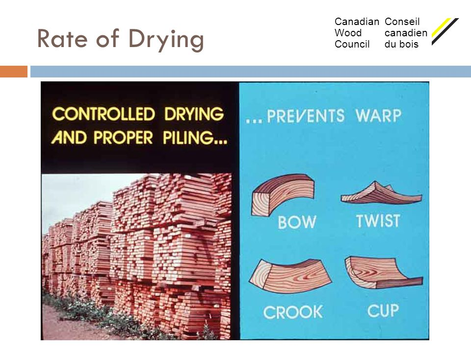Rate of Drying Canadian Conseil Wood canadien Council du bois