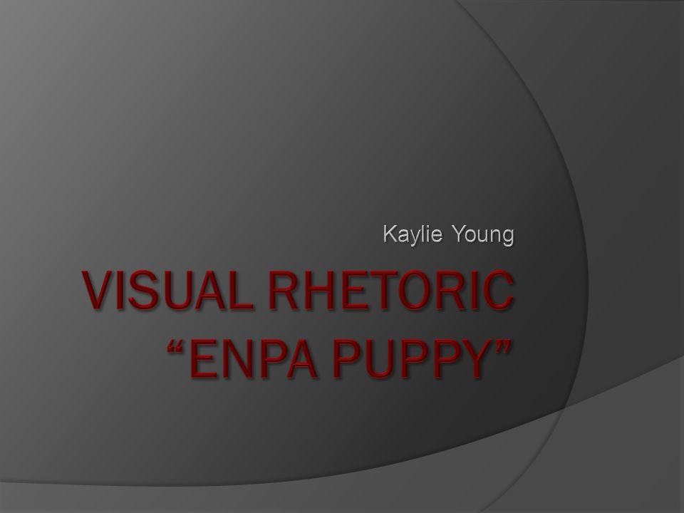 ENPA: A Great Fundraising Campaign. Nonprofitcommunication.